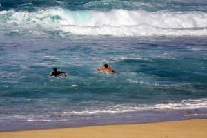 surfersrip